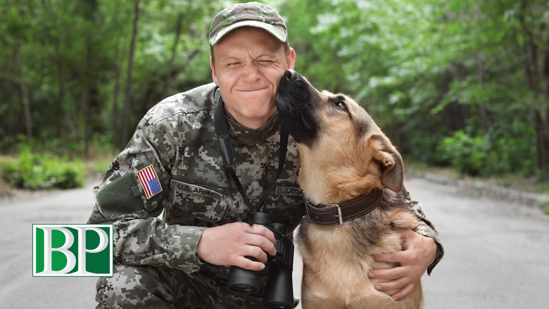 celebrate-national-pets-for-veterans-day